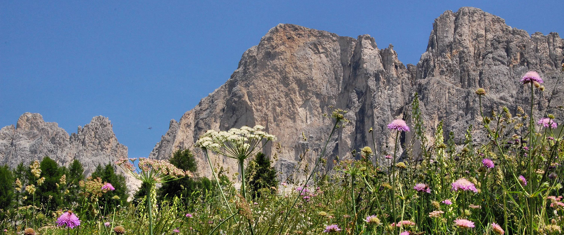 The South Tyrolean valley Val dEga in the Dolomites